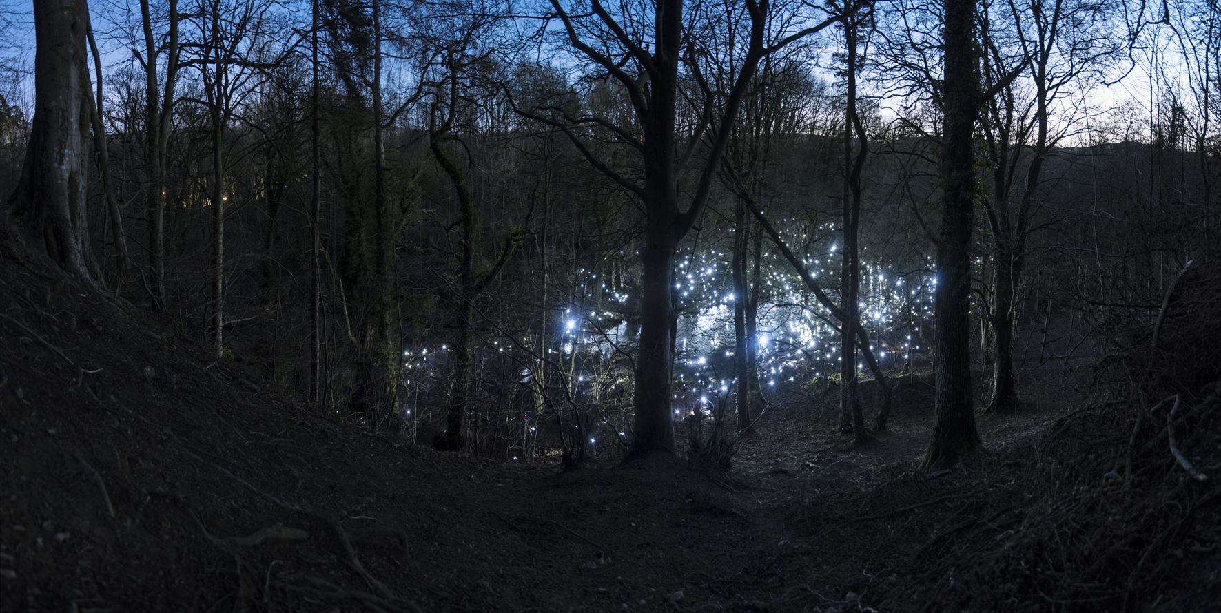 Terrain No. 3 | David Ogle, 2017 | LED keyring torches | landscape installation (photograph) | part of Loomings: produced by: Mark Devereux Projects | image: Andrew Brooks