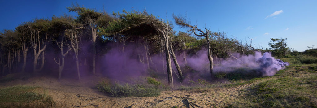 Flood | David Ogle, 2015 | purple smoke pyrotechnics | landscape installation (high resolution digital video installation: 3min36sec) | part of Loomings: produced by: Mark Devereux Projects | image: Andrew Brooks