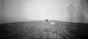 In Search of George Cartlidge | David Bethell | 2014 | pinhole photograph | image: courtesy of the artist