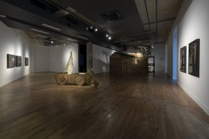Fleeting Flights   David Bethell   2018-19   exhibition installation view, HOME, Manchester   curated by Mark Devereux Projects & Bren O'Callaghan   image: Lee Baxter