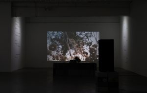 Always something moves | Sophie Lee, 2020 | mixed media: video, text & sound | installation view: Bankley Gallery, Manchester | dimensions variable | image courtesy of the artist